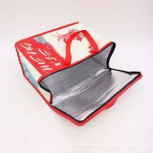Oekotex 100 Custom Printed Cheap Eco PP Non Woven Portable Aluminium Foil Ultrasonic Ice Bag