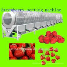 Máquina de classificação de morango