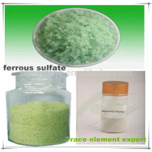 Elemento oligoelemento profesional Aditivo para el pienso del proveedor Sulfato ferroso