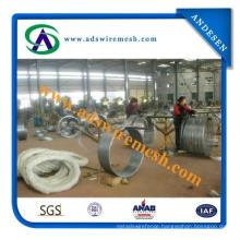 Concertina Razor Barbed Wire for Export to Middle East Market