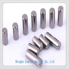 High Speed Motor Use Neodymium Magnet with Nickel Plating