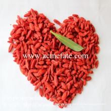 China El mejor exportador al por mayor de la baya del goji / goji de la importación