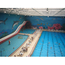 Space Frame Schwimmbad Dach