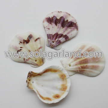 28-36MM mezclada cáscara Natural Decor granos flojos del Seashell