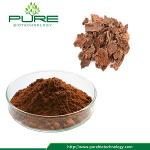 GMP-certifierad Natural Rhodiola Rose Extract