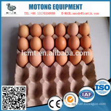 Custom 30 holes of the paper egg tray with best price
