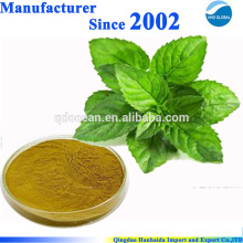 Fonte da fábrica do ISO GMP extrato 100% puro natural da pastilha de hortelã