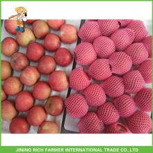 China yantai melhor fuji apple preço