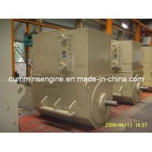 for Sell 6300V 1000rpm AC Alternators (4504-6 500kw)