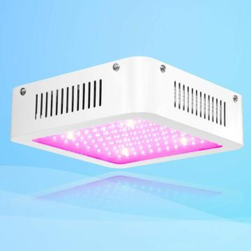 Las luces de cultivo led para amazon