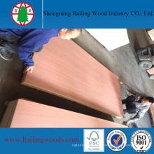 Placa de concreto de madeira compensada de madeira de alta qualidade