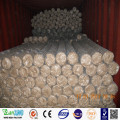 Electro Galvanized Hexagonal Wire Netting