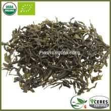 Certificado orgánico Baozhong Taiwan Oolong AA