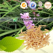 Herb Medicine Radix Ophiopogonis Ophiopogon Japonicus