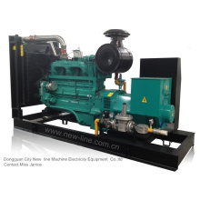 Cummins Erdgas-Aggregat (33kVA-1650kVA)