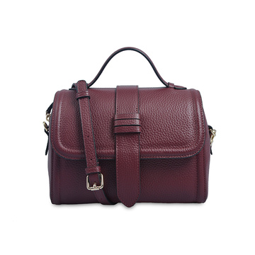 Parker Top Handle AB Earth Leather Designer Handbag