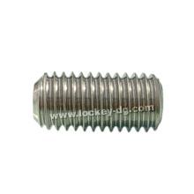 Stainless Steel Grub Screw DIN916