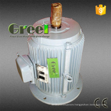 Low Rpm Low Speed 5kw 220VAC Three Phase Permanent Magnet Synchronous Generator