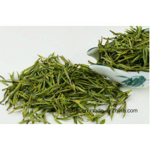 Organic Bud Green Tea