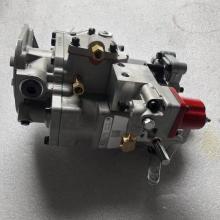 Peças de motor da bomba de injeção CUMMINS CUMMINS da injeção NTA855 4061206