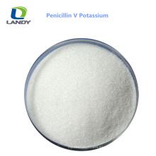 China Buen precio de grado farmacéutico penicilina V potasio