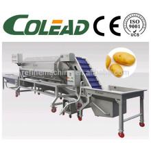 Bebê cenoura máquina / cenoura peeling máquina / haste vegetal peeling máquina / batata equipamentos de processamento