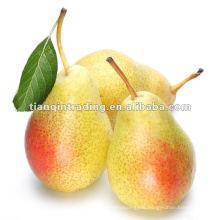 hebei ya pear