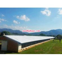 Casa de galinha de estrutura de aço com preço baixo e alta qualidade do fabricante