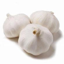 Garlic for Export Packed in 10kgs in Carton Mesh bag Fresh Pure White Garlic