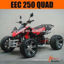 250 ATV 250cc Quad CEE (estrada)