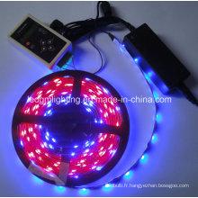Ruban LED Dream Color RGB 5050 Magic IC 1606