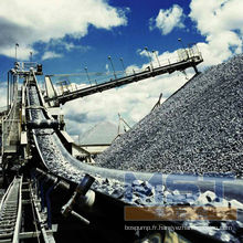 Bande transporteuse en fibre de carbone