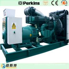 by Perkins Electric Diesel Engine 240kw 300kVA Diesel Generating Set
