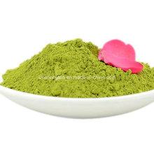 Matcha Super Pó de Chá Verde Estilo Japonês 100% Orgânico UE Nop Jas Certificado Pequeno Pedido Disponível (NO C)