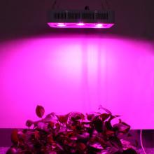 Luzes LED COB com espectro total suspenso