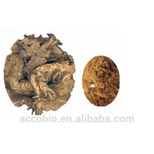 Fuente de fábrica al por mayor 100% Natural Cohosh Extracto de polvo Triterene Glycosides 2.5%