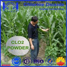 Utilisation agricole: poudre de dioxyde de chlore efficace pour la stérilisation des sols