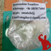 Bodybuilding Masteron Enanthate Steroid Drostanolone Enanthate CAS 472-61-145