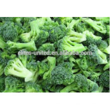 IQF frozen fresh broccoli vegetables