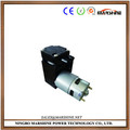 micro high pressure piston pump