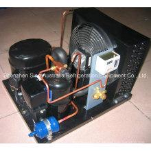 Unidades de condensación refrigeradas por aire Tecumseh fabricadas en China