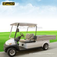 2-Sitzer elektrische Golfwagen Preis elektrische Nutzfahrzeug China Mini-LKW