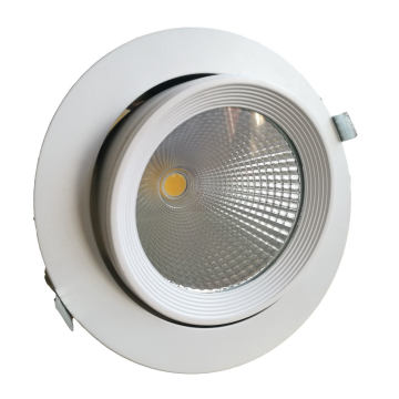 TUV Ce Approved 15W Orientable LED Down Light