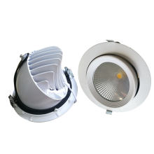 10W / 15W / 20W / 30W / 40W verstellbarer COB LED Trunk Down Light