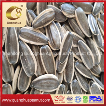 Factory Wholesale Sunflower Seed 361 New Crop with Best Quality