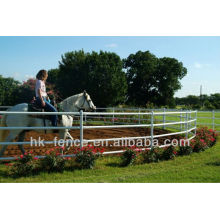 Plumas de entrenamiento de caballo galvanizado