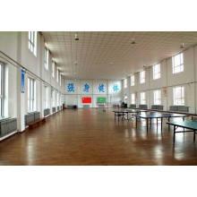 Ping-Pong Ball Court Sports Suelo de madera de arce