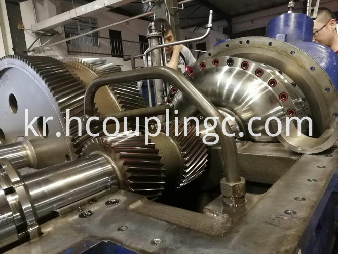 Power Plant Couplings