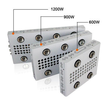 Daisy Chain 3000W 5000W LED Grow Light