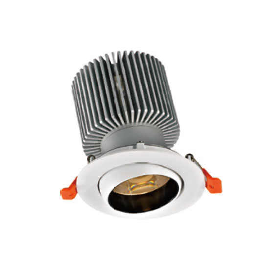 Powerful Brilliant Lighting 30W LED Downlight